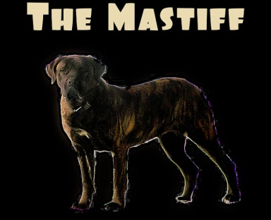 the_mastiff_shyann.jpg